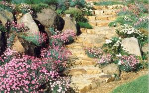 ornamental-garden-10