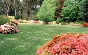 ornamental-garden-14