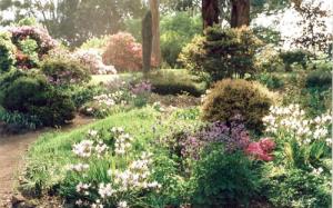 ornamental-garden-16