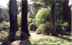 ornamental-garden-2