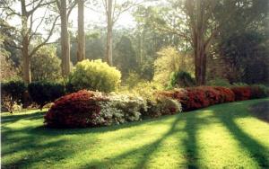ornamental-garden-4