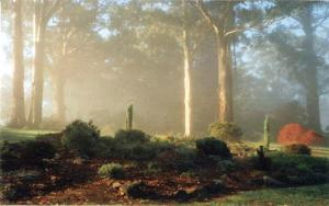 ornamental-garden-5