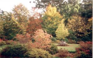 ornamental-garden-7