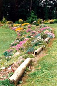 rock-garden-10